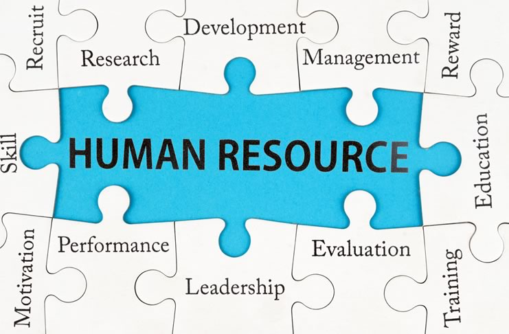 Hr Outsourcing What Does It Mean Rainbow Hr And Training
